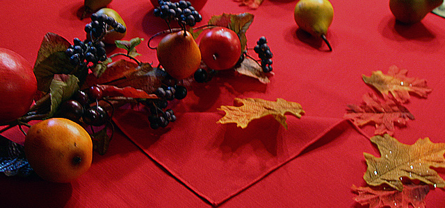 Autumn Equinox Tablecloth Table setting for autumn equinox Holiday & Hearth Holiday and Hearth Lisa Novelline Lisa Anne Novelline author writer The Dance of Spring craft blog creative blog creativity decorator blog festival celebration summer seasons nature blog Mabon Autumn Equinox Harvest Season Season of the Witch September Thanksgiving tablecloth red apples cornucopia autumn lollipops maple sugar candy